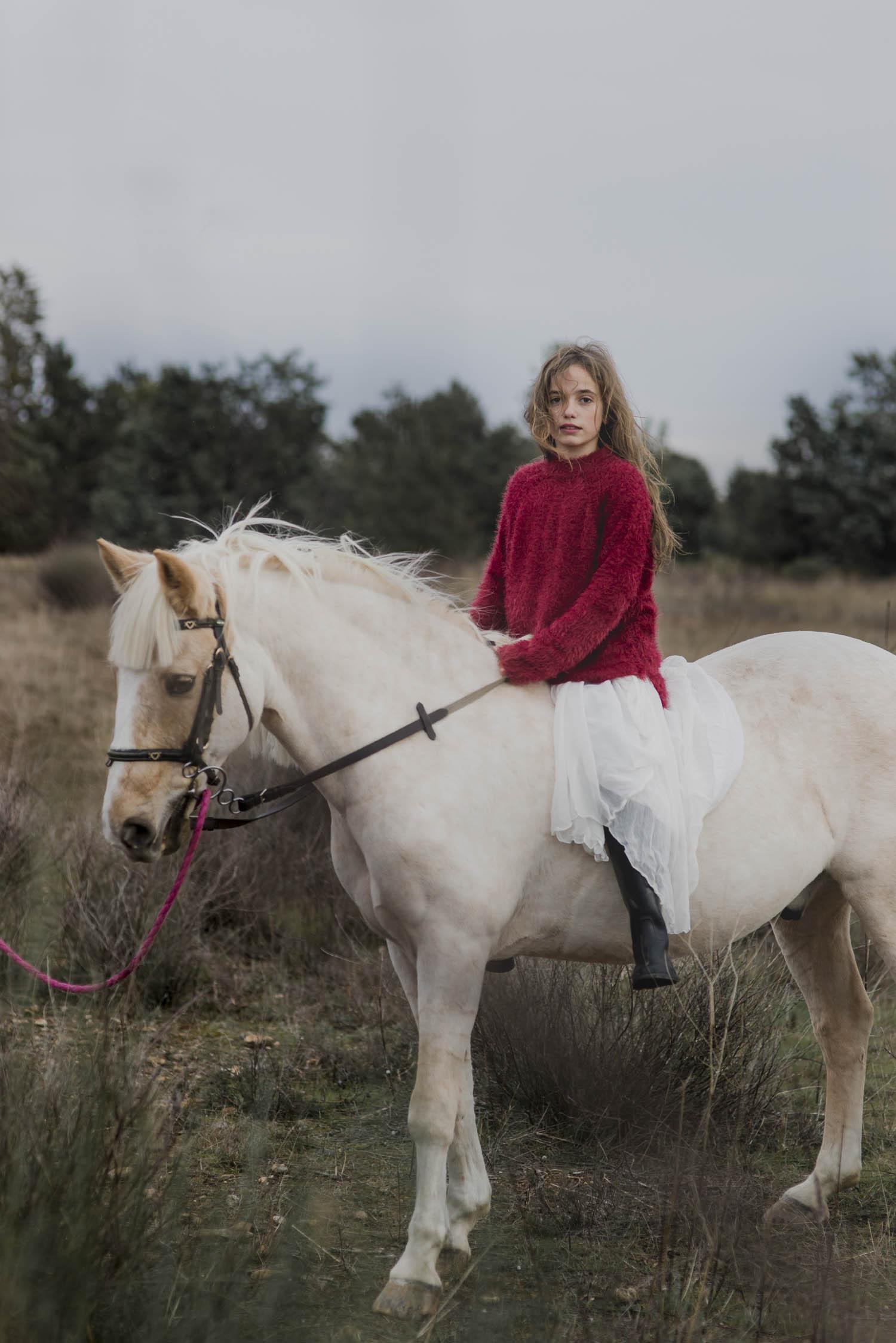 joker_horse_iolanda_sebe_8